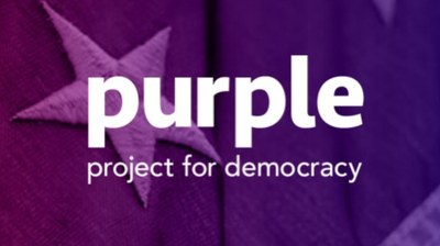 Gerris Corp proud to support Purple Project for Democracy with Pro-Bono Services